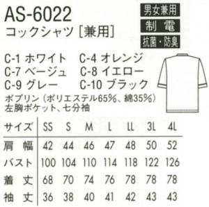 AS-6022--01