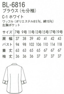 BL-6816--01